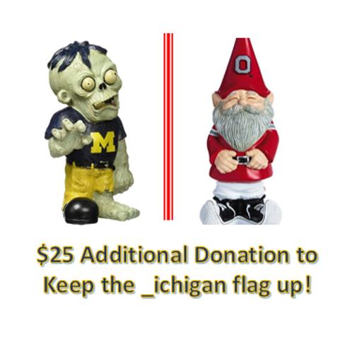 $25 Additional Donation - _ichigan!