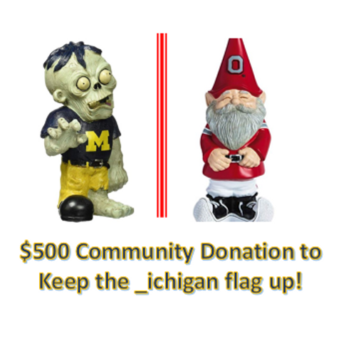 $500 Community Donation - _ichigan!