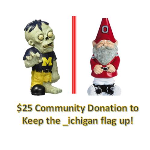 $25 Community Donation - _ichigan!