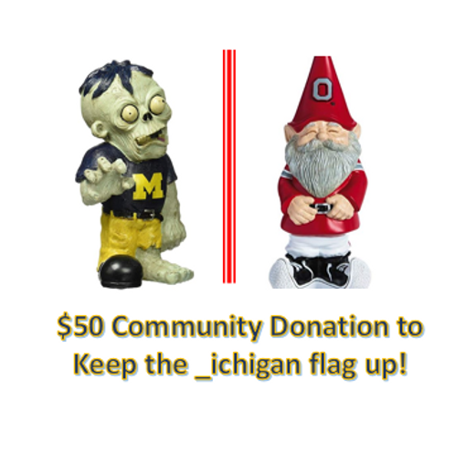 $50 Community Donation - _ichigan!