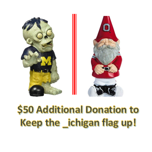 $50 Additional Donation - _ichigan!