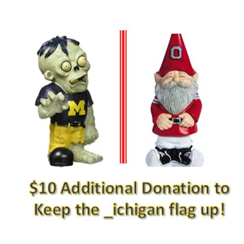 $10 Additional Donation - _ichigan!