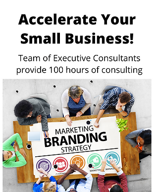 Vec Consulting.png
