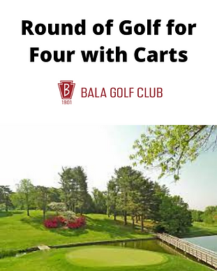 auction item Bala golf for four.png