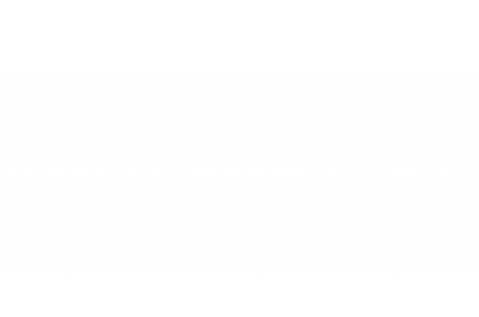 white-gradient_reverse.png