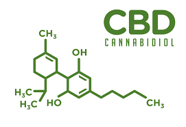 CBD in Skin Care