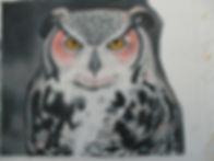 owl7.JPG