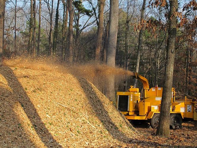 brush cutting & retention pond maintenance in asheville NC, hendersonville NC, Greenville SC, and Spartanburg SC