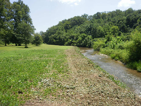 brush cutting & retention pond maintenance in asheville NC, hendersonville NC, Greenville SC, and Spartanburg SC