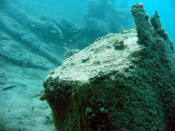 Baumstamm unter Wasser