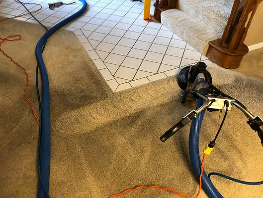 carpet cleaning Roseville