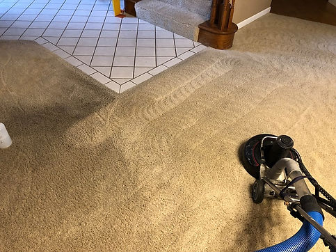 carpet cleaning fair oaks ca