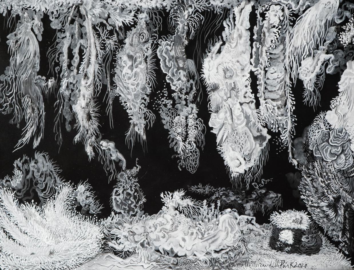 Cristallisation (nature morte)