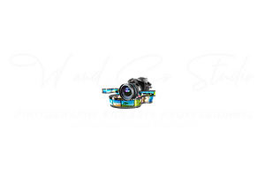 W and Co Studio Blanc png.png