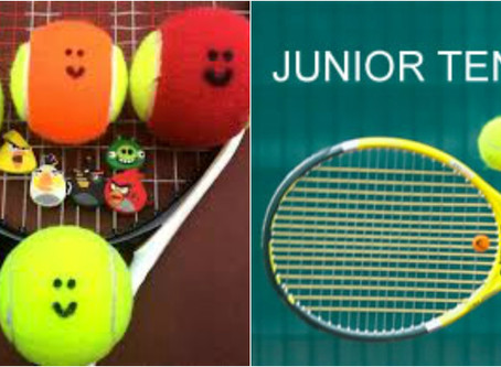 Juniors:  Next ROGY Junior event is in CIAC Limerick Tennis Club on Saturday 27th January. All of th
