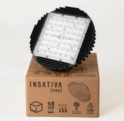 INSATIVA1 - 003.jpg