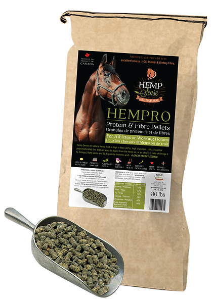 HS-Horse-Pellets-Bag-with-scoop-62805542