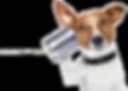Communications-Dog2.png