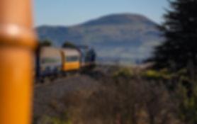 Dunedin Railway Adventures