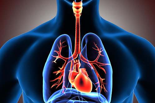 COPD and Spirometry