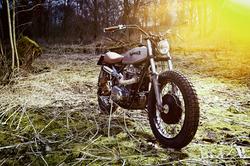 044 Motor Rausch