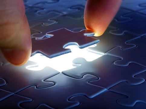 puzzle piece lsat