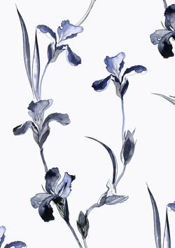 inky irises