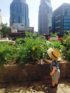 City-Raised and Nature-Connected: Bringing Rich Outdoor Play Experiences to an Urban, Rooftop Classr
