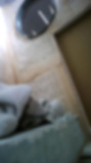 20200503135250_edited.jpg