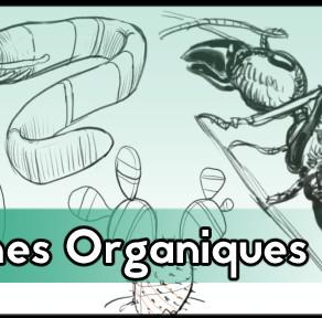 Formes organiques