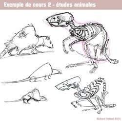 Creature Design 5