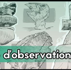 Bases d'observation (màj 30 juin 21)