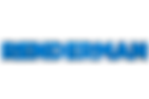 renderman_logo.png