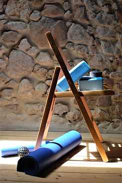 Yoga Therapy props (4).JPG