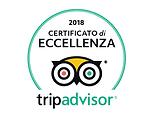 certificato_eccellenza_trip.png