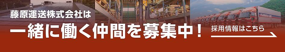 藤原運送株式会社は一緒にはたら働く仲間を募集中!採用情報はこちら