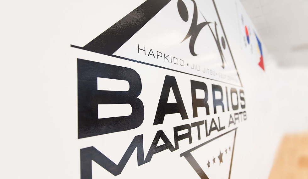 Barrios Martial Arts Logo Mural on Dojo Wall Hapkido Jiu Jitsu Kickboxing Self Defense Seminars