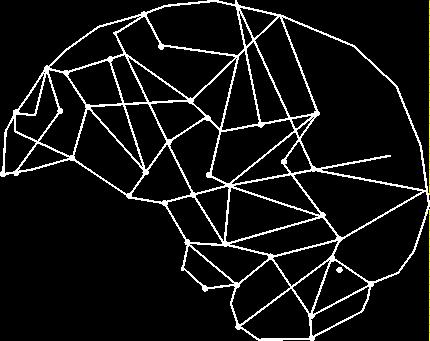 la-lorganized-brain.png