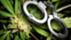 Amarillo Marijuana Lawyer & Attorney.jpg