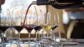 Evening of Wine for Amanda White Eagle