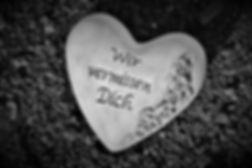 heart-4543832_1920.jpg