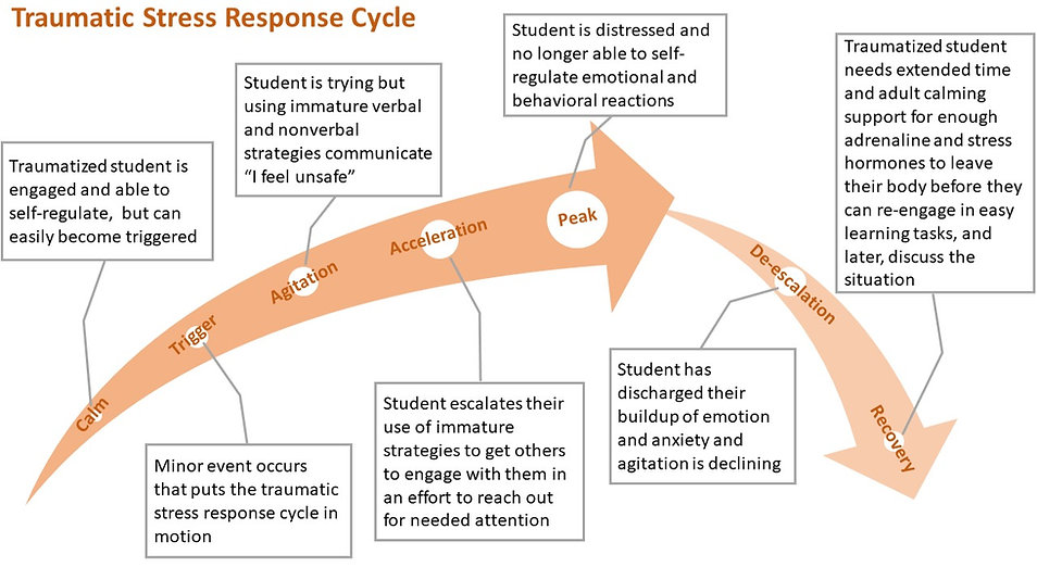 traumatic%20stress%20response%20cycle_ed