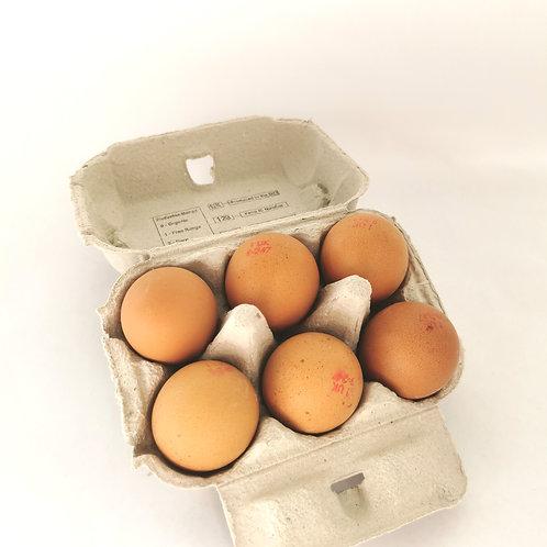 6 Free Range Eggs