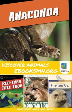 Discover Animals
