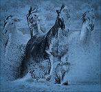 Chris Baldwin_DREAM HORSES_1.jpg