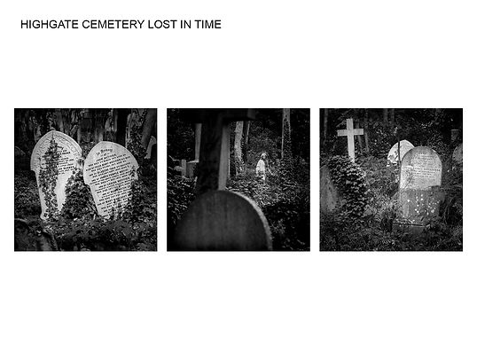 Michael Green - HIGHGATE CEMETERY LOST I