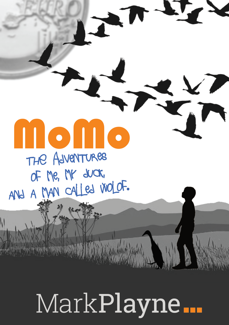 MoMo - The paperback
