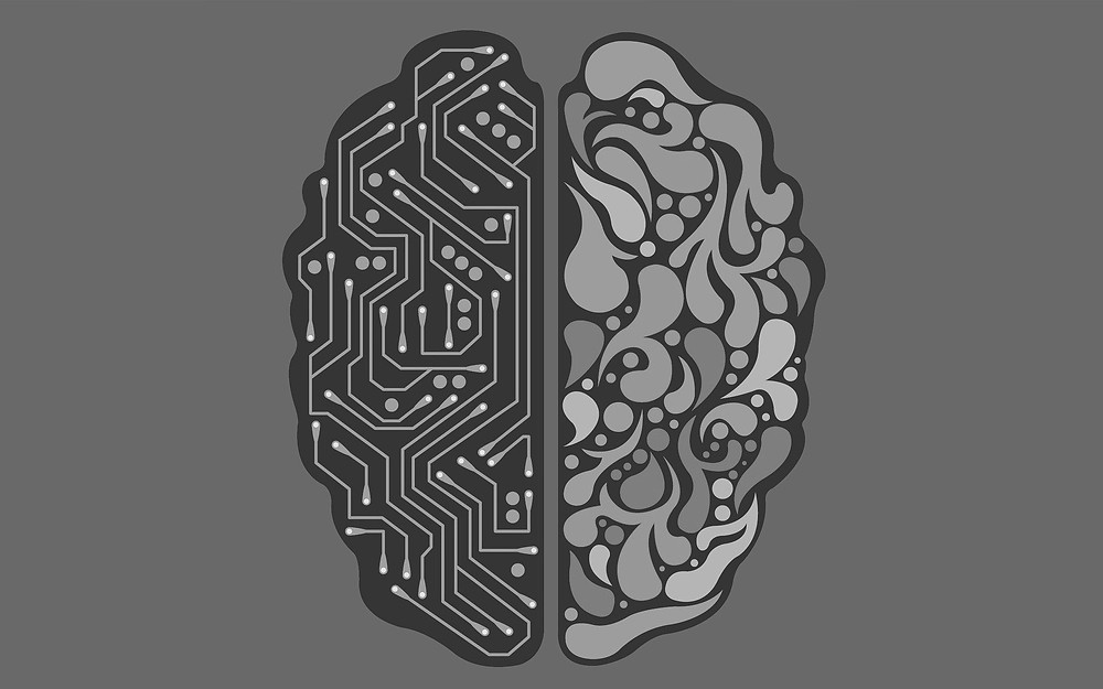Human and digital brain