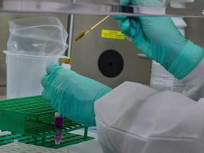 輝瑞疫苗測試成效達九成 資金從新經濟轉移至舊經濟 疫苗誕生前可參考以下部署