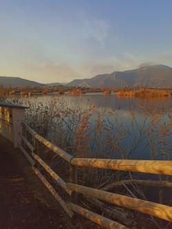 Torbiere Lago Iseo